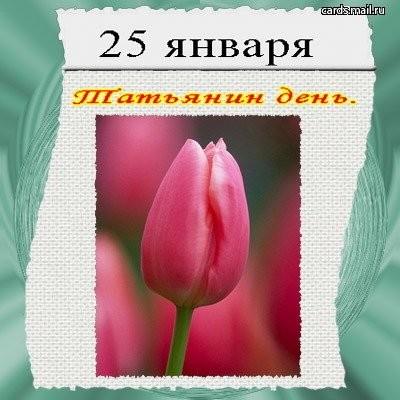 http://www.vprazdnik.ru/otkrytka/25_yanvar/23.jpg